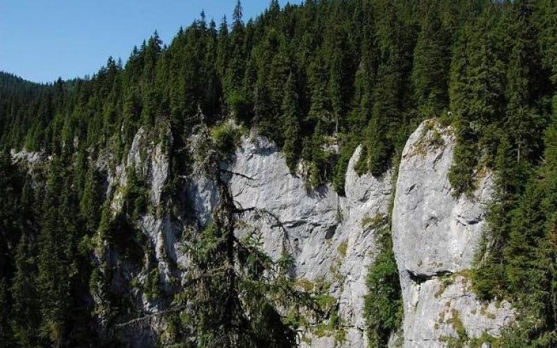 galbena-gorge