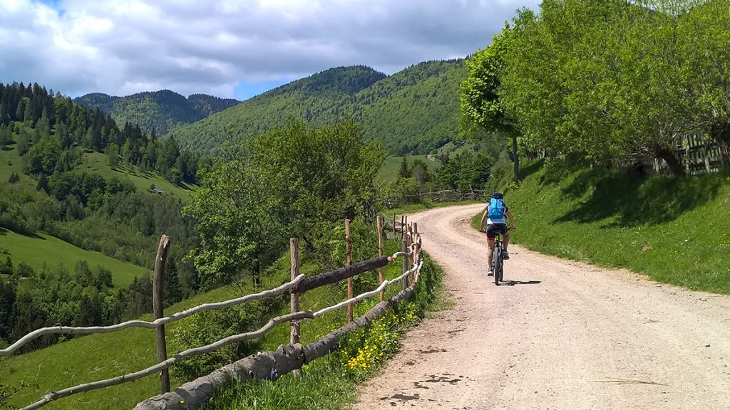 Things to do in Transylvania - cycling