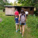 Family tours in Romania