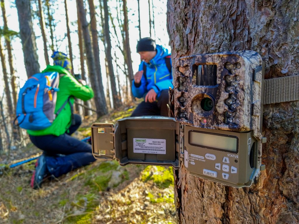 Hiking tours in Transylvania - Setting up a trap camera in Putna Vrancea Natural Park