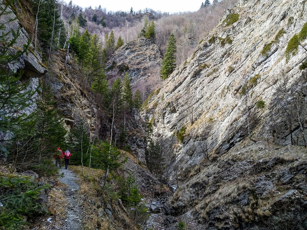Hiking tours in Transylvania - hiking in Tisita Gorge canyon