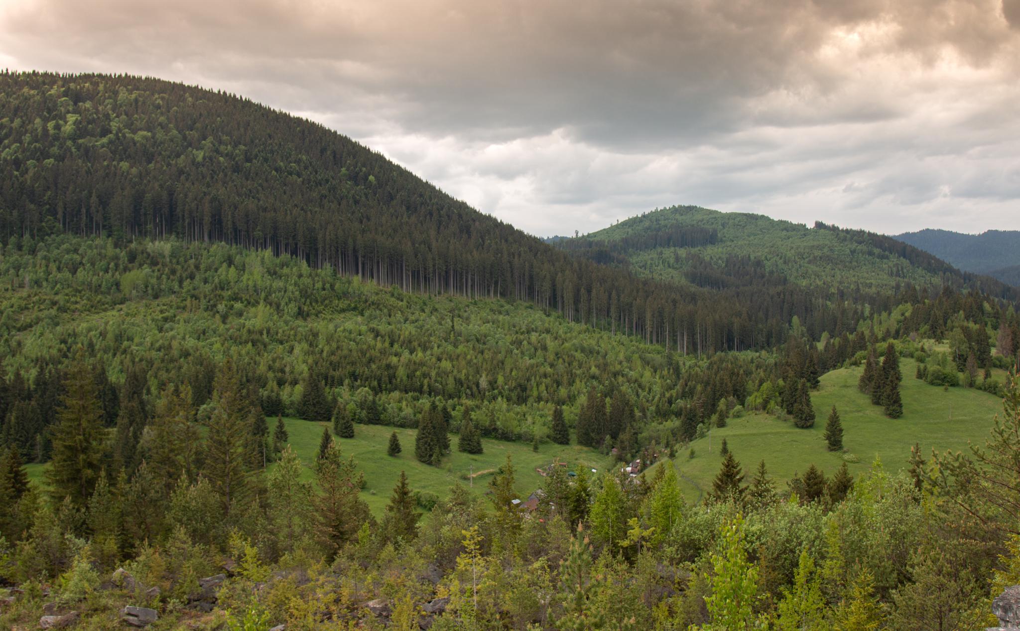 view from fairies glade, Borsec