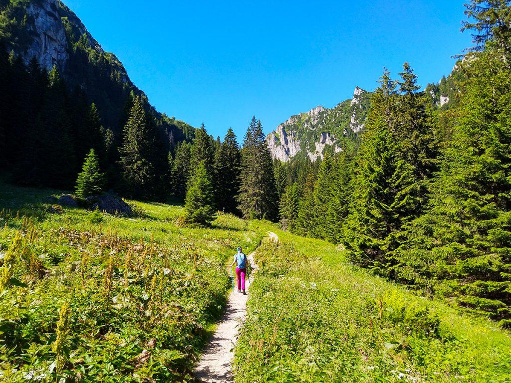 Trail to Mălăiești hut