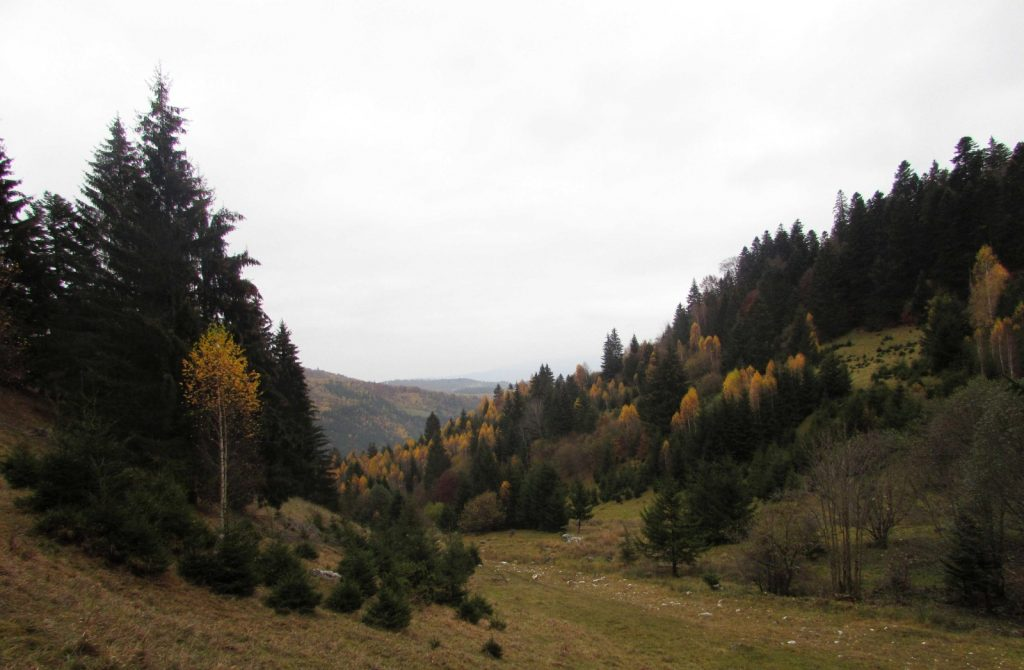 Autumn landscape in Romania