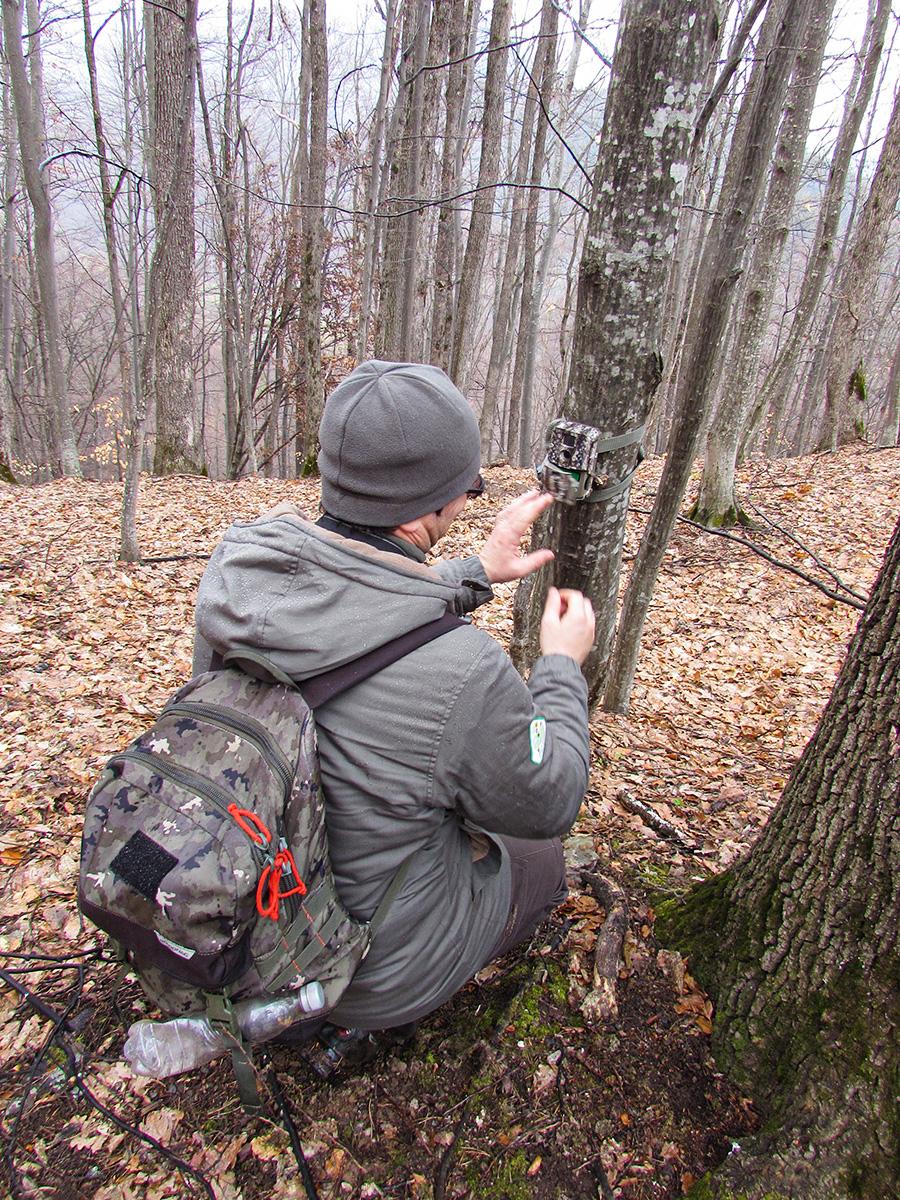 Checking the wildlife trap camera